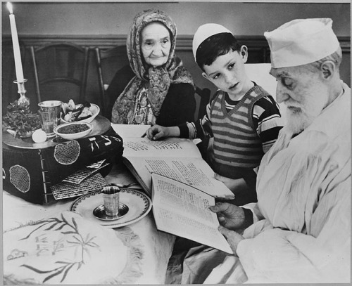 Photograph of a Young Jewish Boy with Elders at a Passover Ceremony, 04/16/1951 by The U.S. National Archives on Flickr.Look at the photo. Consider what has has just happened here, or what is about to happen here. Who has been here? Who will come here and and what will they do? What kinds of interactions can you imagine? Write one leaf about these or other things that occur to you upon looking at the picture. Do not allow yourself to be limited by what you see. Go.| Write One Leaf + about + ask + random + facebook + twitter | sponsors + You Are a Dog [kindle]