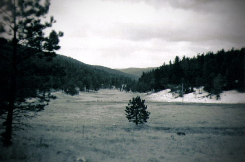Dry Canyon Shot with Holga on Kodak 400TMAX 120.  Developed and scanned by Richard's Photo Lab. Dry Canyon, New Mexico