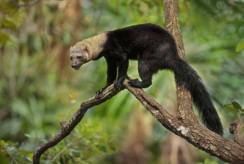 Tayra That wasn't yoga, that was training for the circus.