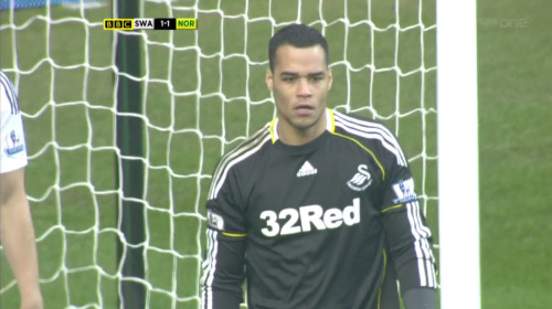 Michel Vorm is sad because he's just found out Leroy Lita stole his Grammy tickets.