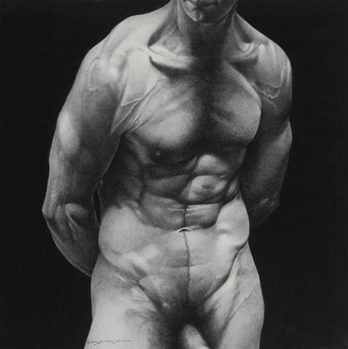 David Warren: Torso (1st Study), 2004.