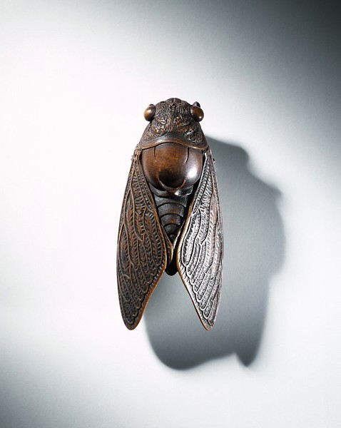 atelierentomologica:  Cicada netsuke, carved wood, ca. 1800-1875 Japan © Victoria and Albert Museum, London