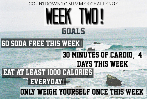countdowntosummer:  Week Two Goals: Go soda-free this week! 30 minutes of cardio, 4 days this week Eat at least 1000 calories everyday! Only weigh yourself once this week   Go soda-free this week: pfff, I'm assuming this means also diet soda… so it's going to be a bit though (I like to drink one sometimes while I study) 30 mins of cardio, 4 times: I think this is achievable :) Eat at least 1000 calories everyday: I usually eat around 1200cals, so this is OK for me. Only weigh yourself once this week: I'll weight myself tomorrow morning and then again, next sunday/monday. I don't like to weight myself, so this is ok. It seems this week's goals are easier for me than last week, so let's rock this :)