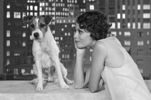 http://blog.quickflix.com.au/2012/01/27/the-artists-dog-uggie-set-to-retire/