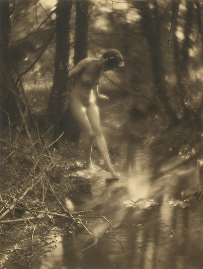 Nude, c. 1910 by Charles J. Cook