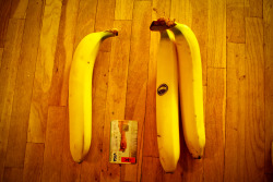 definitely the biggest bananas you can by in maxima!