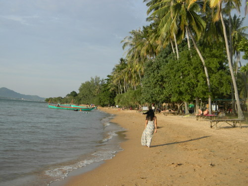 Koh Tonsey (Rabbit Island). I absolutely love this island. When I go back to Cambodia, I'm going to go to this island again. submitted by: sovatdymaeyi — ive never been here, but OMG this is so beautiful!