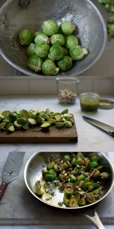 squaremeal:  via eats / oregano brussels