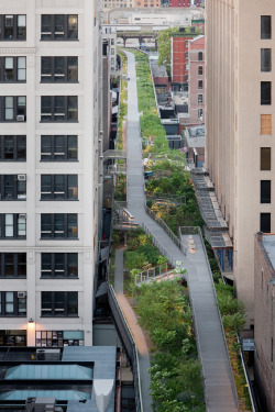 urbangreens:  followitblind:   The High Line    I can't love the High Line enough
