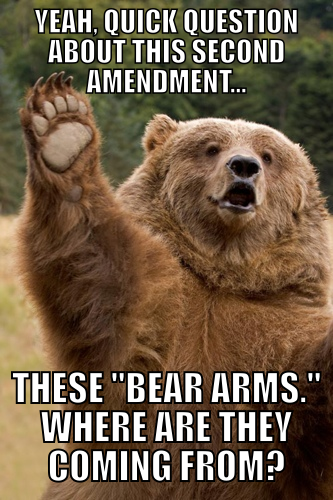 I'm not anti-gun….I'm just pro-bear.