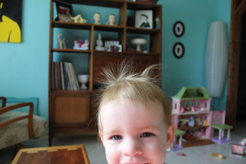 Good Morning! Maggie woke up with static electricity hair today.