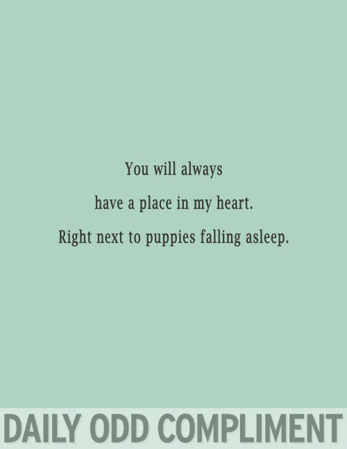 """Sleeping Puppies"""