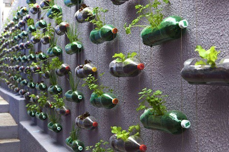 shutterhoney:  Wall planter…great use of the length of the bottles.