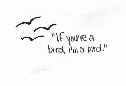 """ If you're a bird, I'm a bird."""