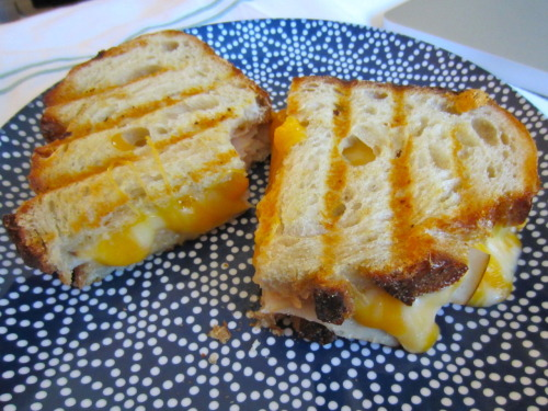 yummy panini i made for the boy and me this weekend… sourdough bread, turkey, colby jack cheese :)