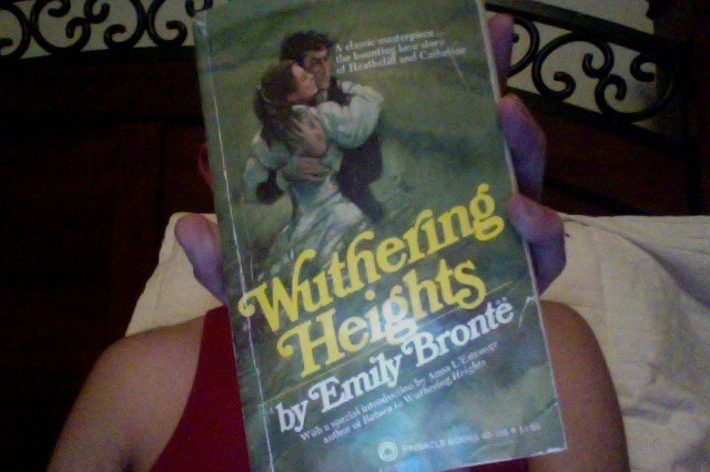 The copy of Wuthering Heights I got at the library sale (for 50 cents) looks like a graphic novel. This is going to be awesome. Can't wait. Fire up the engines and never turn them off. Light all the candles this is going to get waxy. Waxing poetic that is.