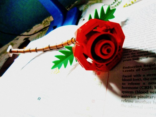 awesome rose made out of legos! :3 (coz real roses are too mainstream) and i must say, WAGI ANG EFFORT! :D