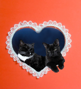 Happy V-day, shitbirds! xo Spanky & Nutkins