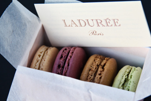 A Joyeuse Saint-Valentin to all, from Ladurée!  (Photo: Lindsey Tramuta ©