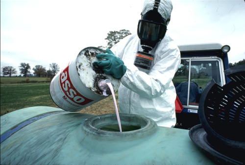 "theweekmagazine:  sustainable-sam: Court Rules Monsanto Guilty of Chemical Poisoning in France ""The ruling has potential to give leverage to other health claims against pesticides."""