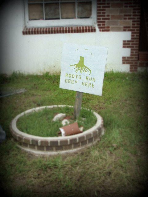 "ROOTS on Flickr.""ROOTS RUN DEEP HERE""; a sign in the Lower Ninth Ward neighborhood of New Orleans, Louisianna following Hurricane Katrina."
