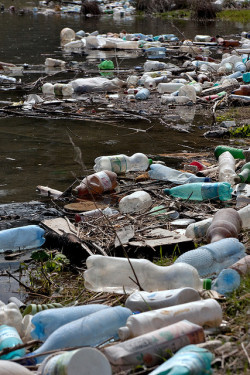 mothernaturenetwork:  While most plastics are touted as recyclable, the reality is that they're downcycled. A plastic milk carton can never be recycled into another carton — it can be made into a lower-quality item like plastic lumber, which can't be recycled. Luckily, there are simple steps you can take that will dramatically decrease the amount of plastic waste you generate.16 simple ways to reduce plastic waste