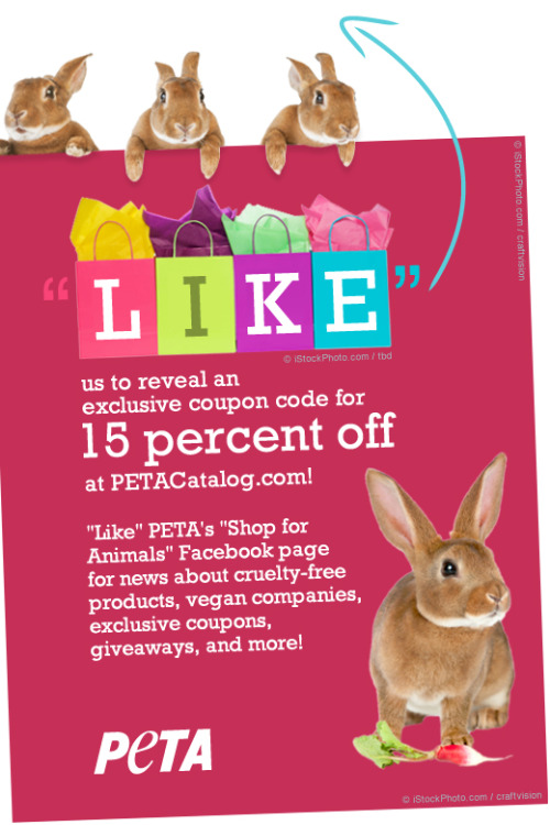 Head over to our 'shop for animals' Facebook page top get your 15% off.