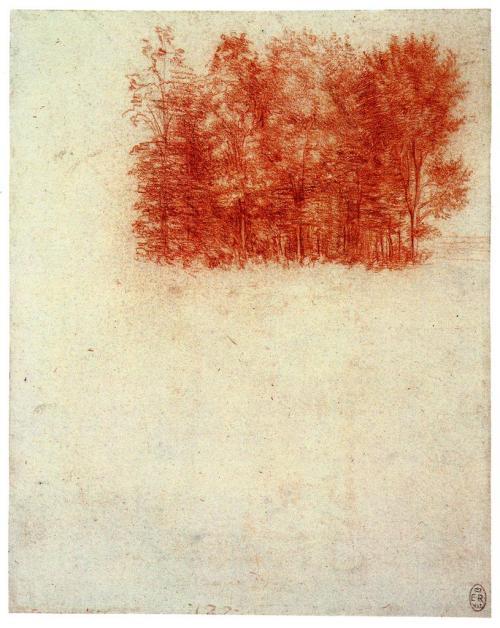 loverofbeauty:  Leonardo da VinciA Copse of Trees, 1508