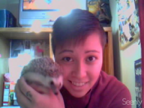 swisher-skating:  this is mah hedgehog! its so fucking bright in my room..