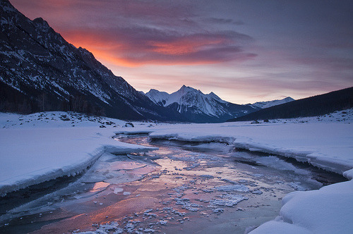cosmek:  69 - 365 (by Jeff Lewis Photography)