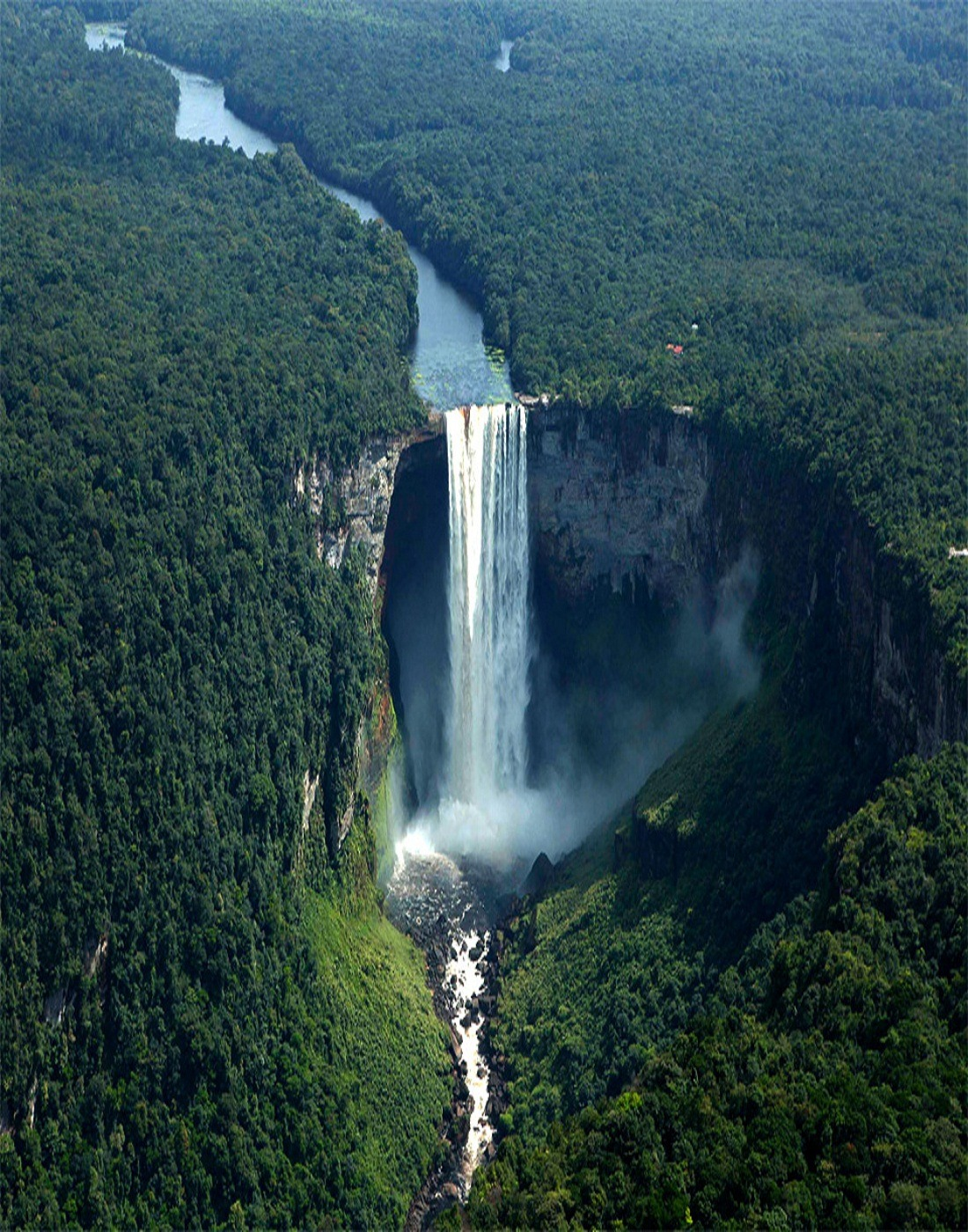 davinci-chode:   The Worlds largest drop waterfall, Kaieteur Falls