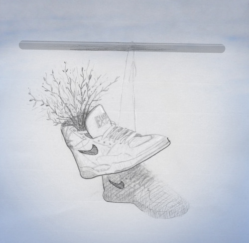 """Size 10 Spontaneous Urban Intervention"" Guerrilla Planting Proposal Ink, graphite, colored pencil and paper8.5 x 11"" Spontaneous vegetation nails a slam dunk in a pair of Nike Air Force 1's, in Roxbury, Massachusetts. Seed mix: Achillea millefolium, Aster (Symphytrichum) pilosus, Cichorium intybus, Leucanthemum vulgare, Tanacetum vulgare, Rudbeckia hirta, Lotus corniculatus,Trifolium hybridum,Trifolium repens,Vicia cracca, Lolium perenne (based on Peter Del Tredici's cosmopolitan urban meadow mix) BibliographyDel Tredici, Peter. Spontaneous Urban Vegetation : Reflections of Change in a Globalized World. Nature and Culture, 2010.Kühn, Norbert. Intentions for the Unintentional Spontaneous Vegetation as the Basis for Innovative Planting Design in Urban Areas. Journal of Landscape Architecture, Berlin, Autumn 2006.Jorgensen, Anna. The social and cultural context of ecological plantings. In: Dunnett, Nigel, and James Hitchmough (eds.), The Dynamic Landscape: Design, Ecology and Management of Naturalistic Urban Planting. London: Taylor & Francis, 2004."