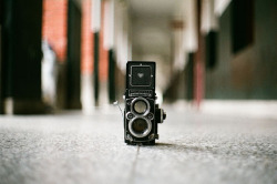 Title: Camera Life - Rolleiflex 2.8F Xenotar Thanks to: http://www.flickr.com/photos/13054551@N00