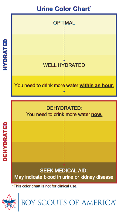ilovecharts:  via howintensive  Peeing blood is also Not Good.