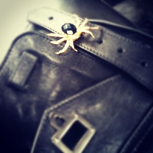 There's a spider on my PS1 today (cc @accessorize_usa) (Taken with instagram)