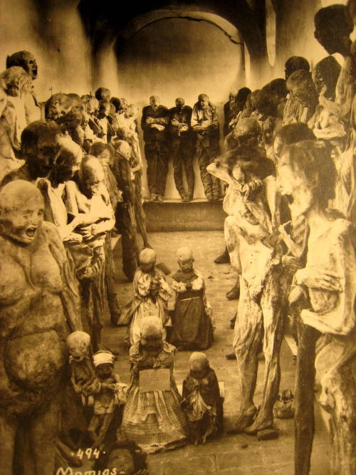 fearvictim:  The Mummies of Guanajuato Mexico  Don't run away; it's only me —
