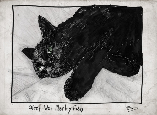 Sleep well Marley Fish