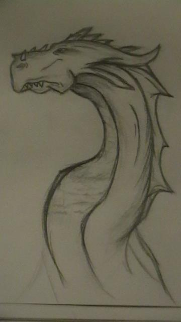 My dragon. :3