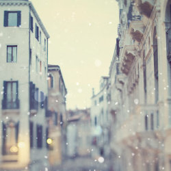 (via Venice photograph Winter White Snow by EyePoetryPhotography)