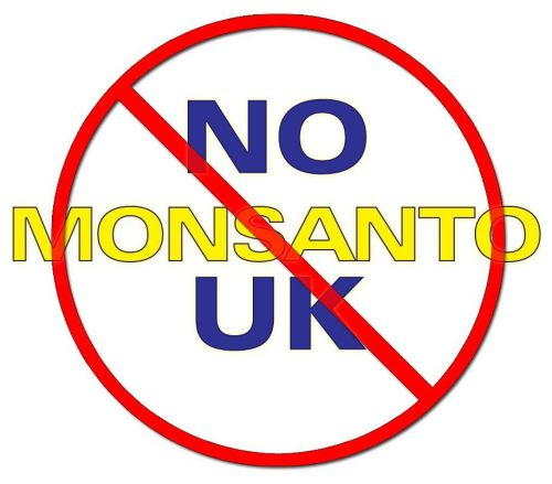 "No Monsanto UK is a petition to ""Tell Sainsbury's and Waitrose: No Monsanto products in UK Supermarkets!""  Basically they are selling a product called Bellaverde Broccoli, which is a flagship Monsanto product.  We don't want this company's food on our supermarket shelves, we don't want this company even in the UK at all!  #SayNoToMonsanto They were voted ""The Worst Company in 2011"" by Natural Society.  They are the largest GMO food company in the world and have received international criticism and legal action for their destructive, unethical, and often illegal business practices.  Monsanto is the company that brought us Agent Orange and for 7 years knowingly dumped toxic waste in Wales that contained 67 toxic chemicals including 7 PCBs.  That site is an unlined quarry that is still leaking into the groundwater, making it one of the most contaminated areas in all of the UK. This company is the enemy of traditional agriculture, they want to dominate the food supply and force us to eat their genetically modified garbage.  Say no to Monsanto now!"