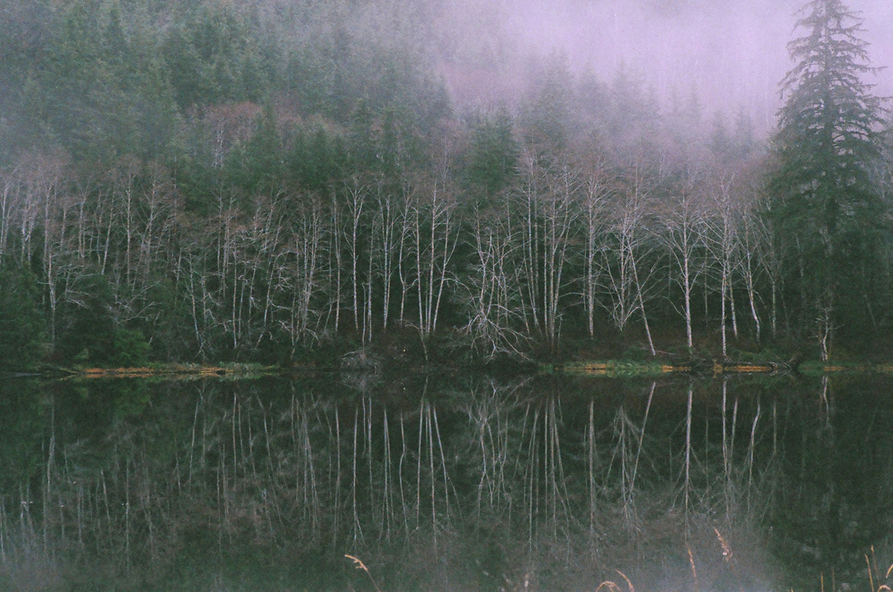 liquidsparks:  Beaver Lake on Burnt Mountain Rd   photo by Ruby Sparks