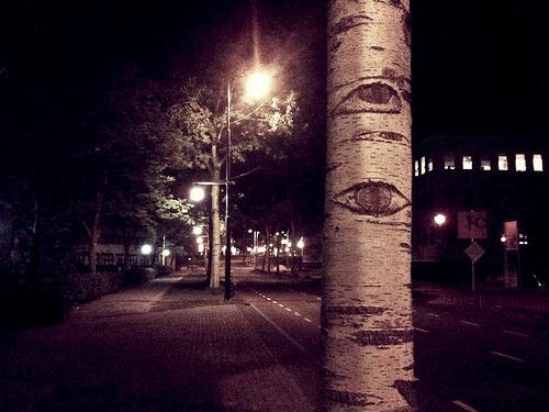 horas eye