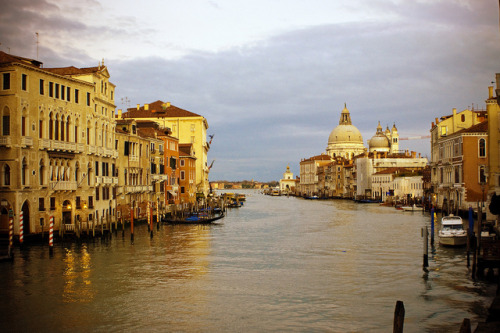 Craving Venice by RachaelMc on Flickr.