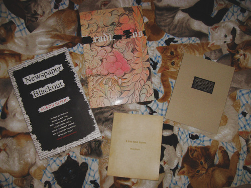 daughterofs:  I just received these books which all contain blackout poetry:Newspaper Blackout by Austin Kleon - find it hereA Little White Shadow by Mary Ruefle - find it hereNets by Jen Bervin - find it hereRadi Os by Ronald Johnson - find it hereSince I've dedicated this blog to my own blackouts, I thought I'd just leave this here in case you are interested in such books. ^_~  I would add a few others:  Tom Phillips, A Humument Janet Holmes, The Ms of M Y Kin And, I'd be a terrible marketer if I didn't mention that Steal Like An Artist has a few blackouts, too…