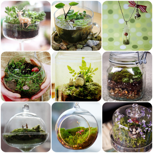 Terrariums  via:  imcatchingfireflies Terrariums are a fun way to add a touch of nature inside homes if you dont have space a lot of space to work with.  They are easy to make and are very portable.  Just plop one down on your desk and voila! You have a mini garden right beside you&read more