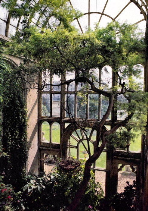 (via Indoor Gardens / glasshouse door)