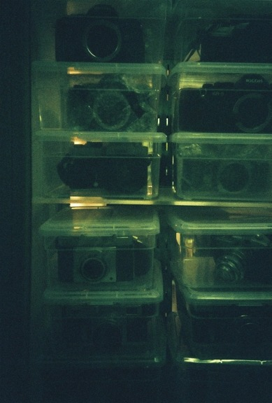 camera bodies stored so cutely in stacked plastic boxes!