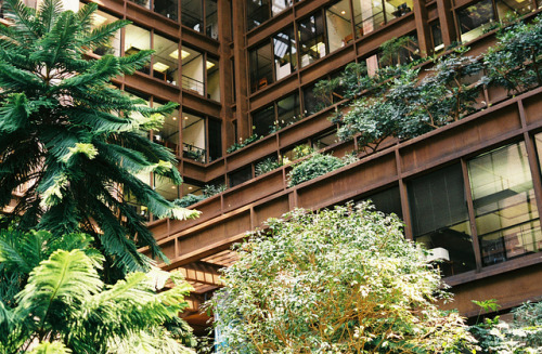 valscrapbook:  Ford foundation indoor garden by jorge zapico on Flickr.