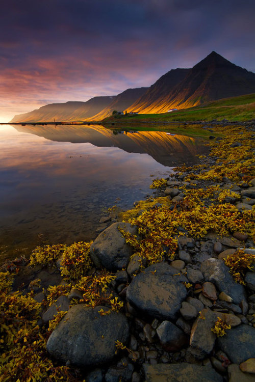 weandthecolor:  Evening in the Fjords Stunning landscape photography in the West Fjord region of northwest Iceland in 2010 by Dylan & Marianne Toh. via: MAG.WE AND THE COLORFacebook // Twitter // Google+ // Pinterest