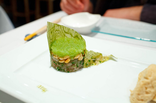 kampachi tartare with wasabi tobiko, pine nuts and soy photo by alwe